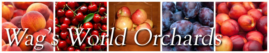 Wags World Orchards